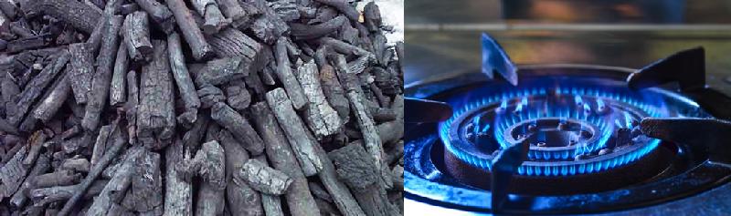 lu quay vịt dùng than và gas Viễn Đông