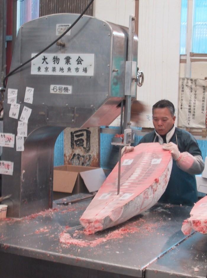 Máy cắt khúc cá