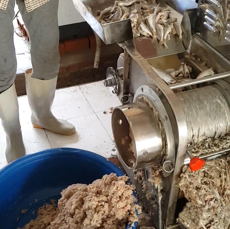 Bộ phận lọc xương cá của máy